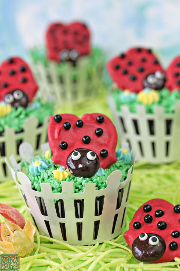 Lovely Lady Bugs Cupcakes