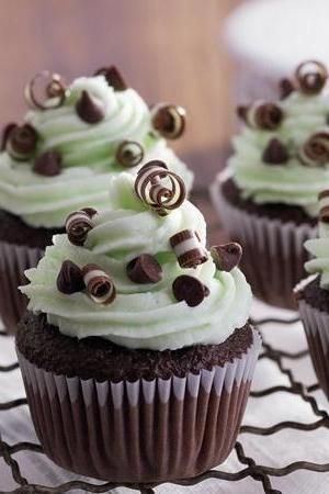 Beautiful Mint Chocolate Chip Cupcakes